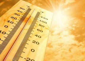 Heatwave driving tips